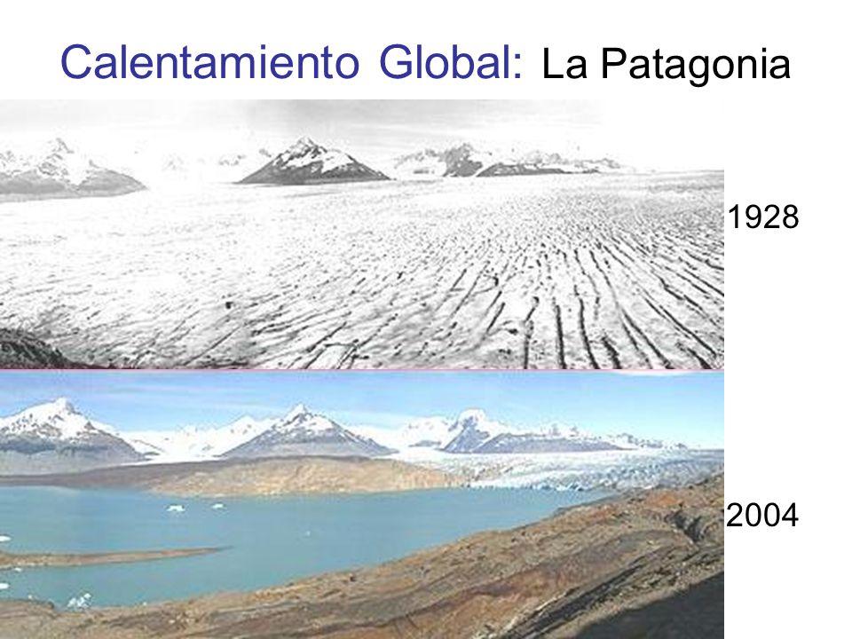Calentamiento Global: La Patagonia 1928 2004