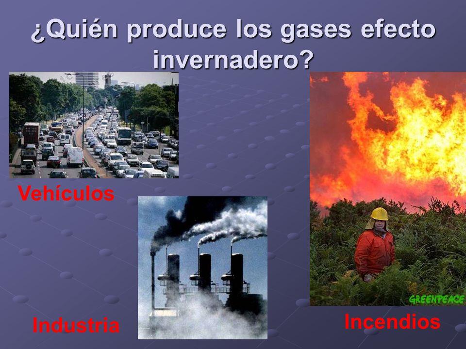 ¿Quién produce los gases efecto invernadero? Vehículos Industria Incendios