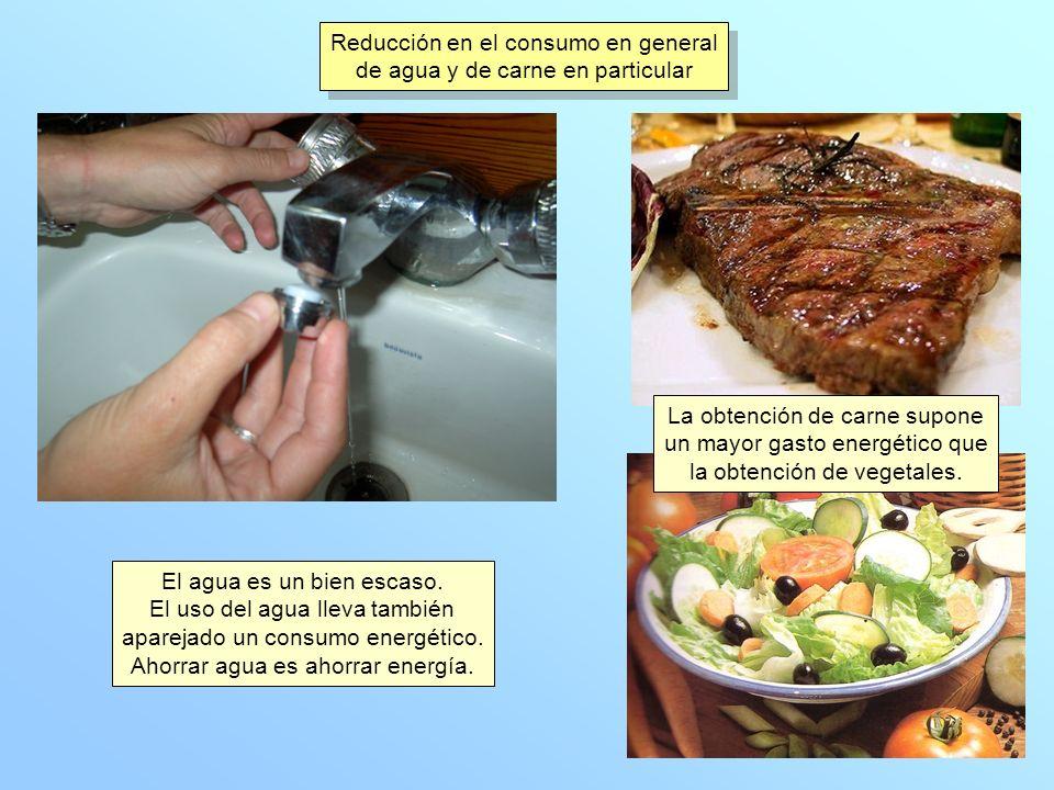 Reducción en el consumo en general de agua y de carne en particular Reducción en el consumo en general de agua y de carne en particular El agua es un