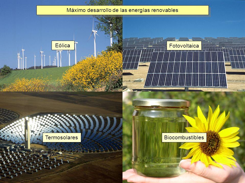 Fotovoltaica Eólica Termosolares Biocombustibles Máximo desarrollo de las energías renovables