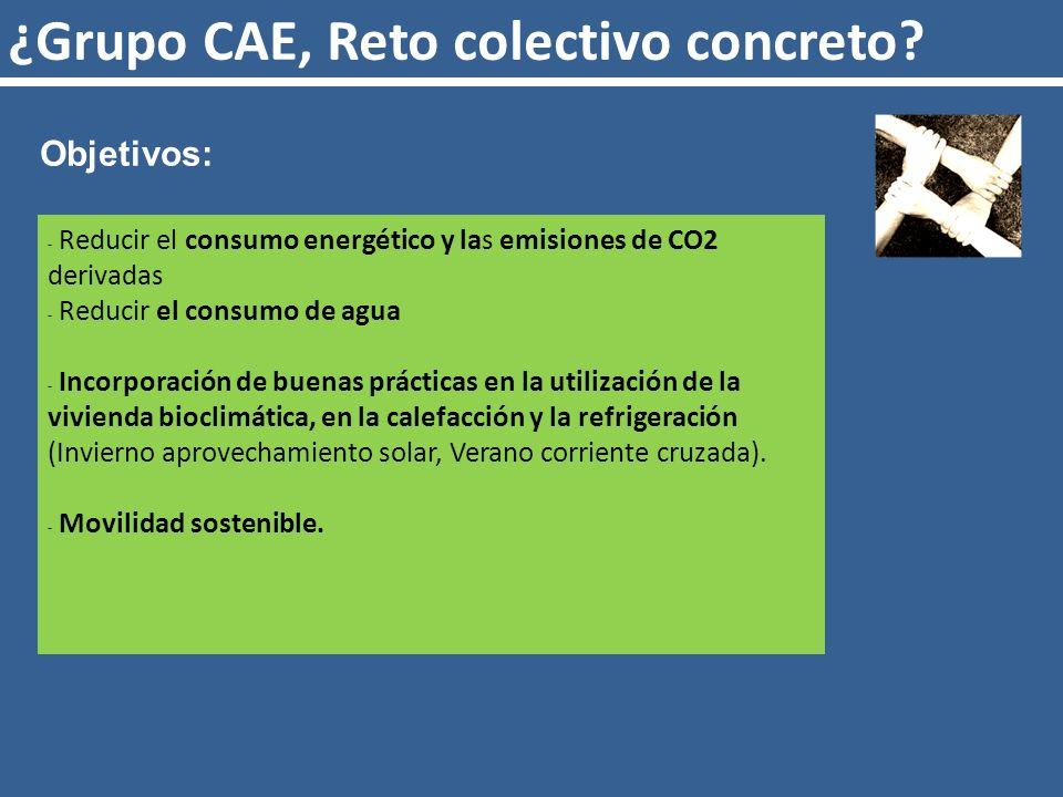 ¿Grupo CAE, Reto colectivo concreto.