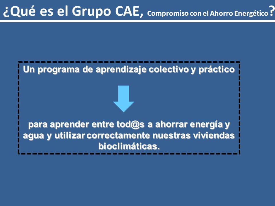 ¿Qué es el Grupo CAE, Compromiso con el Ahorro Energético .