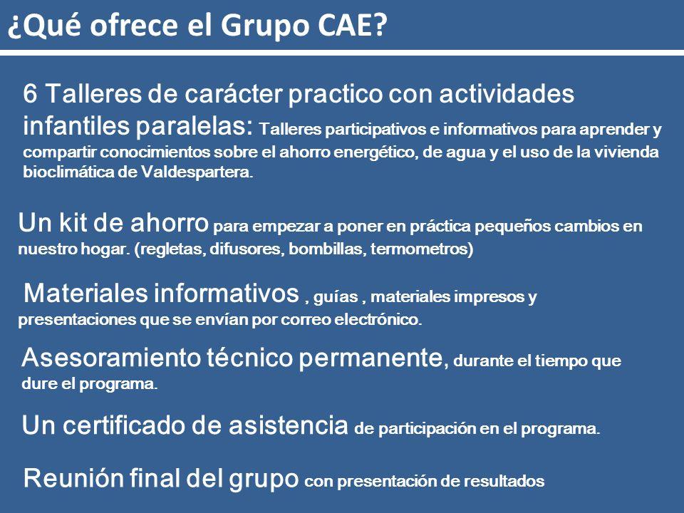 ¿Qué ofrece el Grupo CAE. Asesoramiento técnico permanente, durante el tiempo que dure el programa.