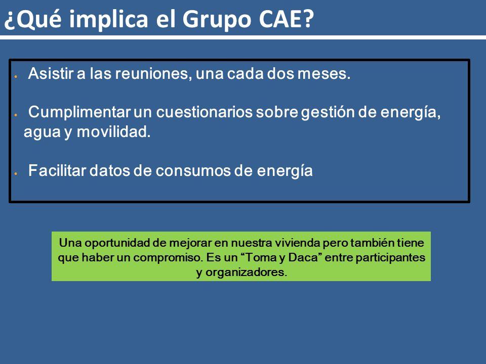 ¿Qué implica el Grupo CAE. Asistir a las reuniones, una cada dos meses.