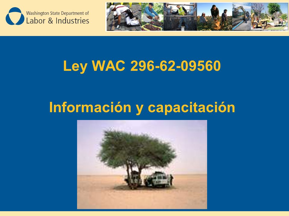 Ley WAC 296-62-09560 Información y capacitación