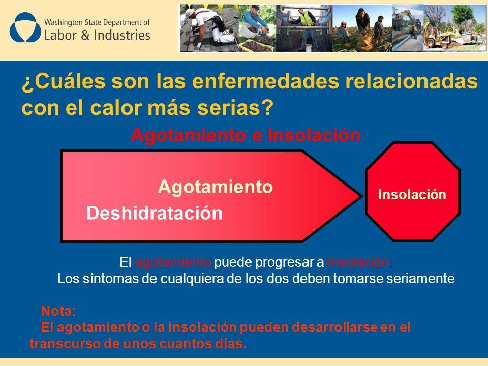 Deshidratación Agotamiento Insolación ¿Cuáles son las enfermedades relacionadas con el calor más serias.