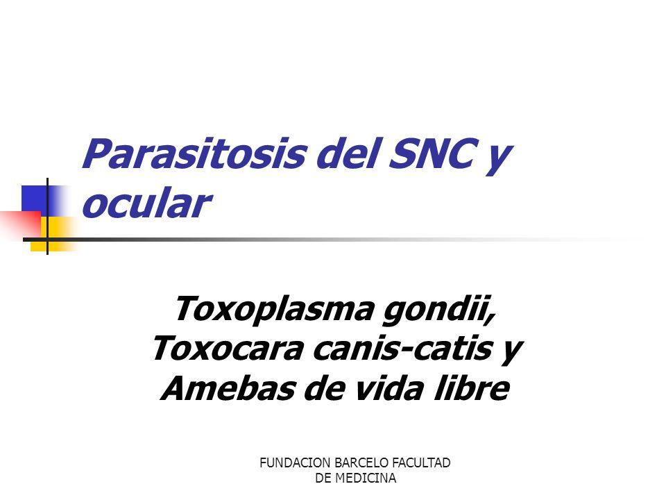 FUNDACION BARCELO FACULTAD DE MEDICINA Parasitosis del SNC y ocular Toxoplasma gondii, Toxocara canis-catis y Amebas de vida libre