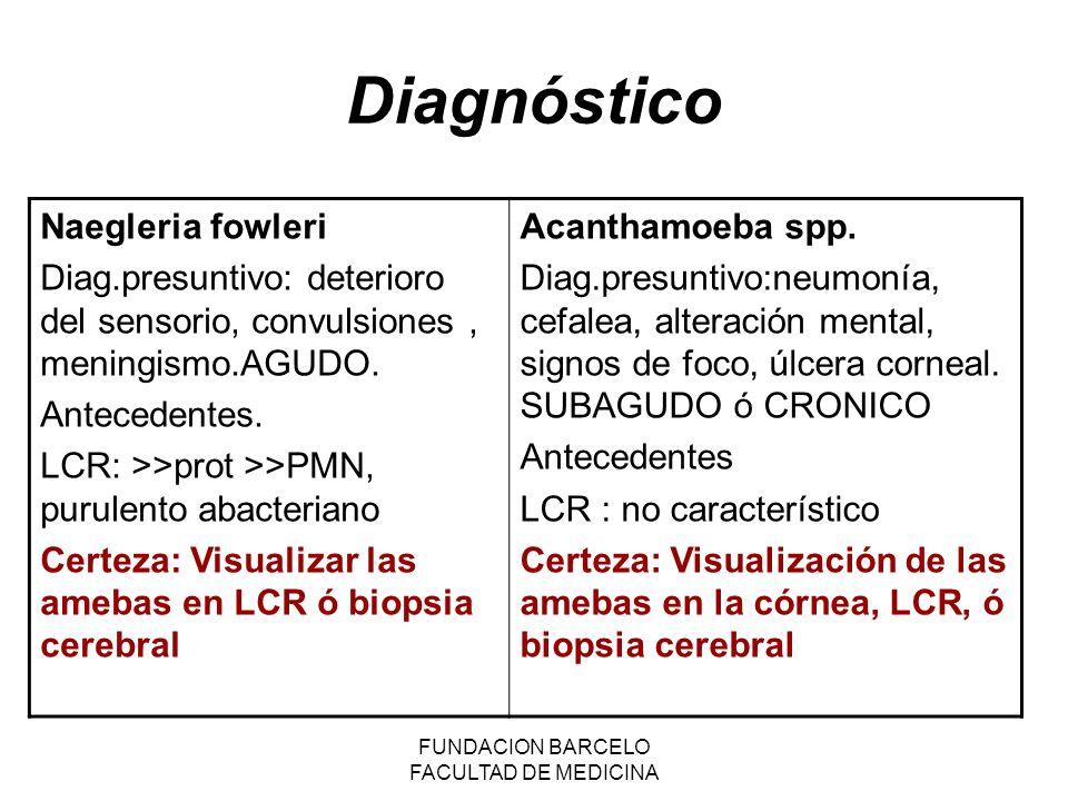 FUNDACION BARCELO FACULTAD DE MEDICINA Diagnóstico Naegleria fowleri Diag.presuntivo: deterioro del sensorio, convulsiones, meningismo.AGUDO. Antecede