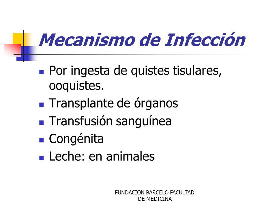 Mecanismo de Infección Por ingesta de quistes tisulares, ooquistes. Transplante de órganos Transfusión sanguínea Congénita Leche: en animales