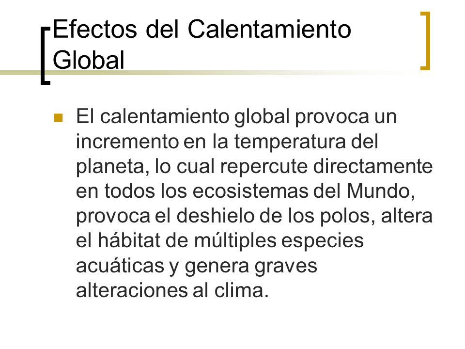 Efectos del Calentamiento Global El calentamiento global provoca un incremento en la temperatura del planeta, lo cual repercute directamente en todos los ecosistemas del Mundo, provoca el deshielo de los polos, altera el hábitat de múltiples especies acuáticas y genera graves alteraciones al clima.