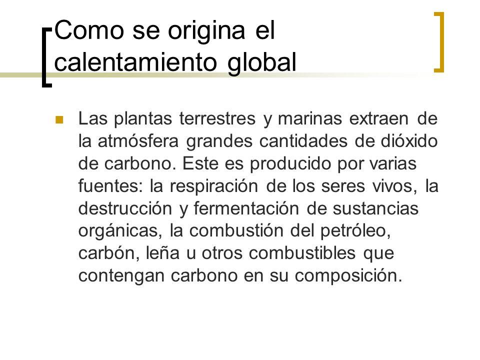 Como se origina el calentamiento global Las plantas terrestres y marinas extraen de la atmósfera grandes cantidades de dióxido de carbono.