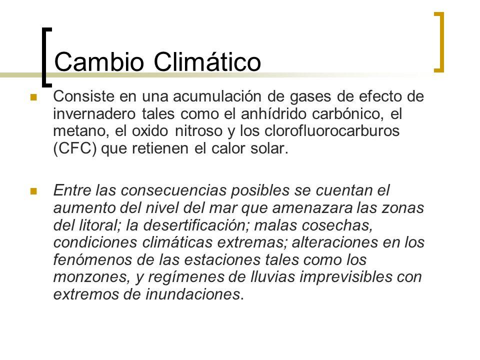 Cambio Climático Consiste en una acumulación de gases de efecto de invernadero tales como el anhídrido carbónico, el metano, el oxido nitroso y los clorofluorocarburos (CFC) que retienen el calor solar.