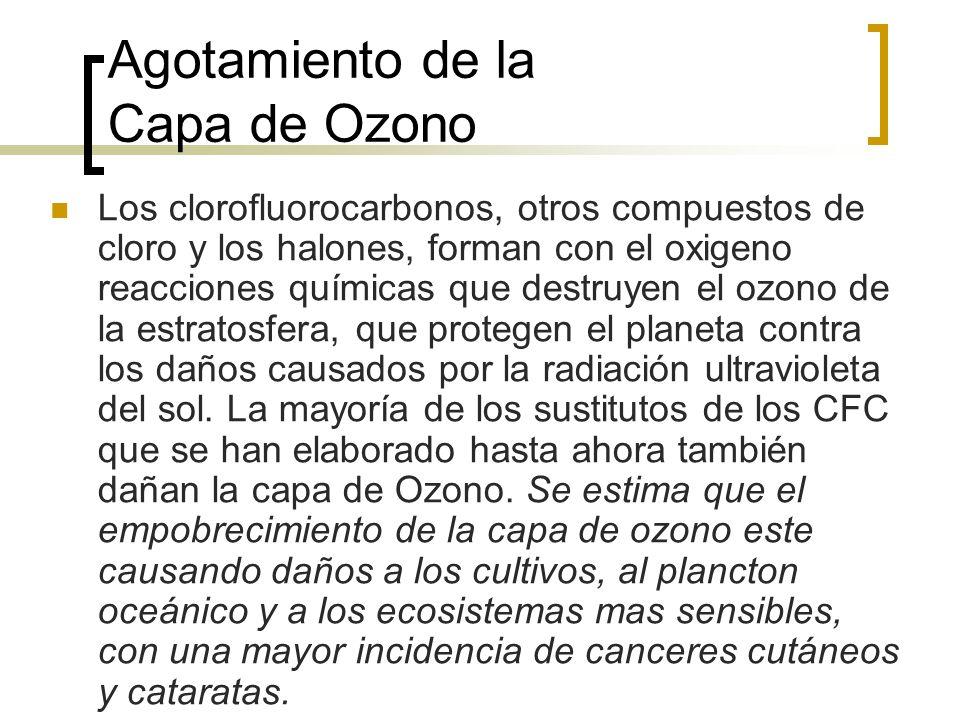 Agotamiento de la Capa de Ozono Los clorofluorocarbonos, otros compuestos de cloro y los halones, forman con el oxigeno reacciones químicas que destruyen el ozono de la estratosfera, que protegen el planeta contra los daños causados por la radiación ultravioleta del sol.