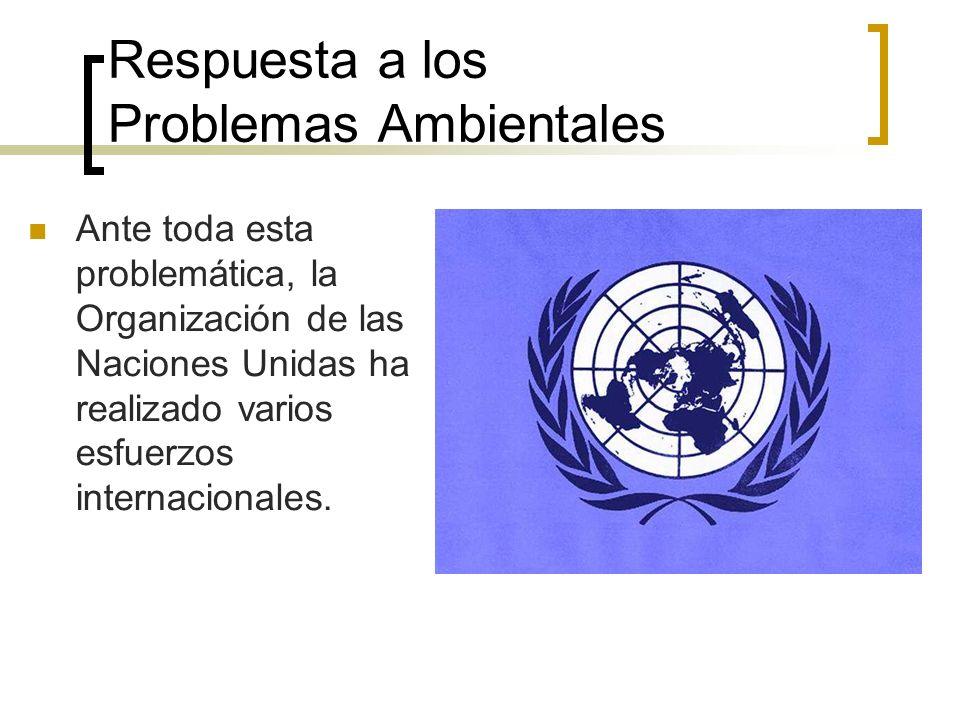 Respuesta a los Problemas Ambientales Ante toda esta problemática, la Organización de las Naciones Unidas ha realizado varios esfuerzos internacionales.