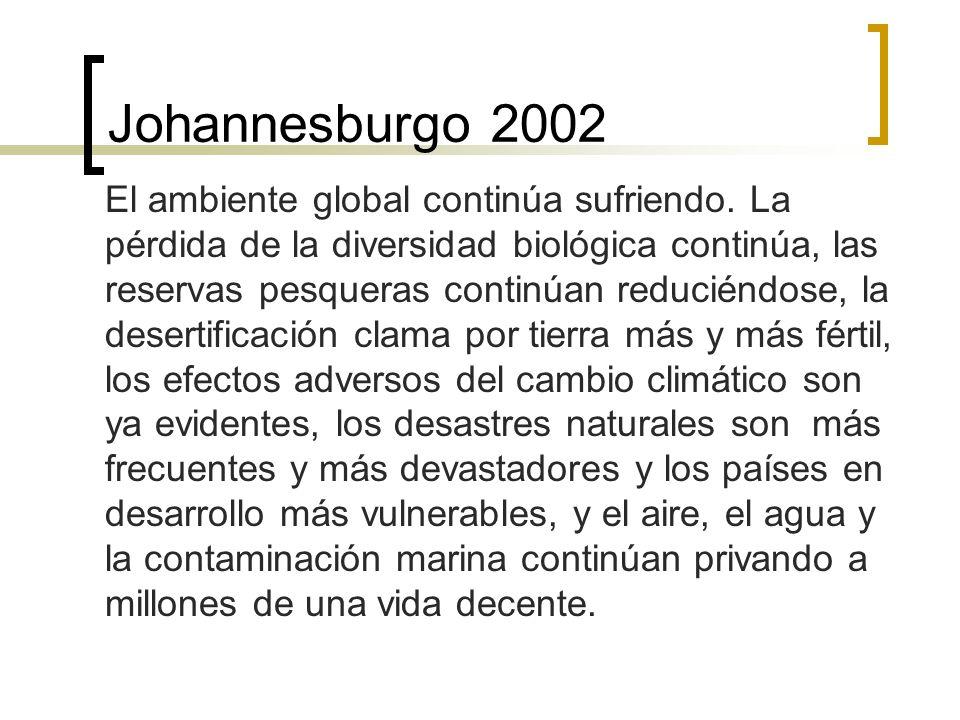 Johannesburgo 2002 El ambiente global continúa sufriendo.