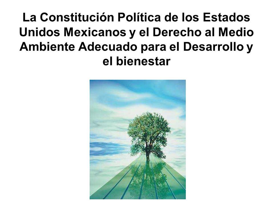 La Constitución Política de los Estados Unidos Mexicanos y el Derecho al Medio Ambiente Adecuado para el Desarrollo y el bienestar