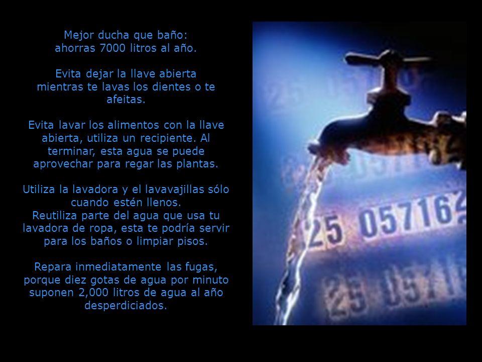 Mejor ducha que baño: ahorras 7000 litros al año.