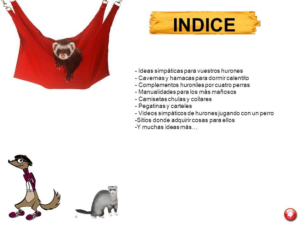 INDICE - Ideas simpáticas para vuestros hurones - Cavernas y hamacas para dormir calentito - Complementos huroniles por cuatro perras - Manualidades p