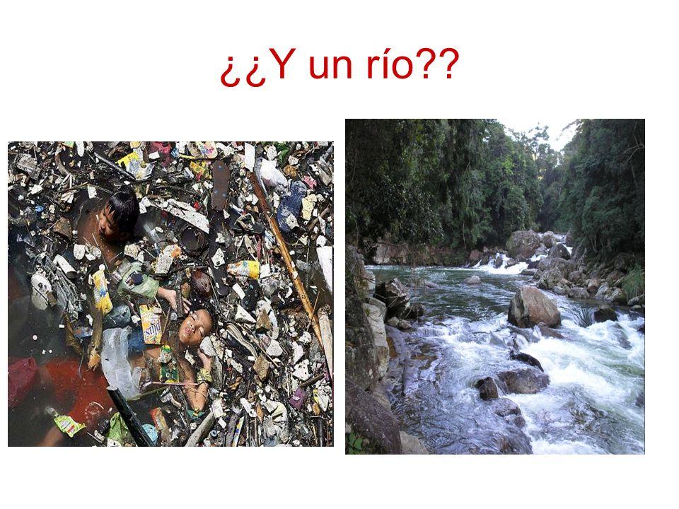 ¿¿Y un río??