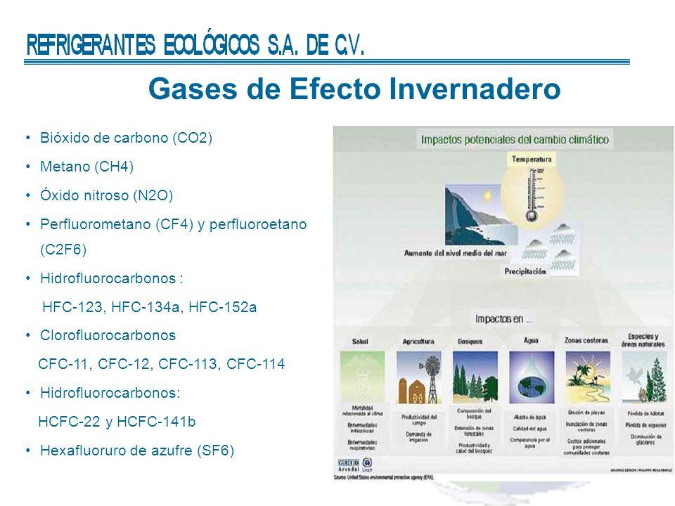 Gases de Efecto Invernadero Bióxido de carbono (CO2) Metano (CH4) Óxido nitroso (N2O) Perfluorometano (CF4) y perfluoroetano (C2F6) Hidrofluorocarbonos : HFC-123, HFC-134a, HFC-152a Clorofluorocarbonos CFC-11, CFC-12, CFC-113, CFC-114 Hidrofluorocarbonos: HCFC-22 y HCFC-141b Hexafluoruro de azufre (SF6)
