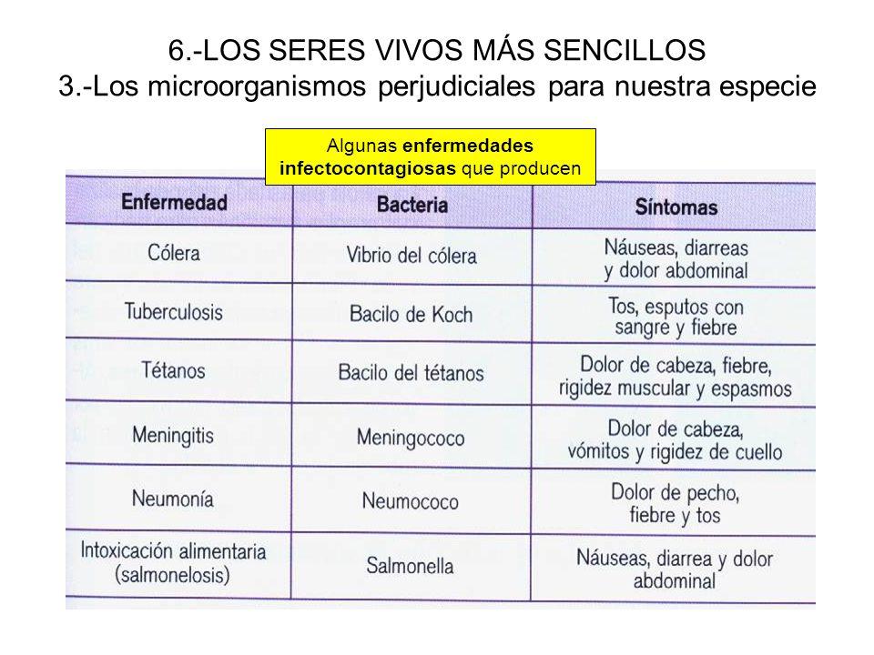 6.-LOS SERES VIVOS MÁS SENCILLOS 3.-Los microorganismos perjudiciales para nuestra especie Algunas enfermedades infectocontagiosas que producen