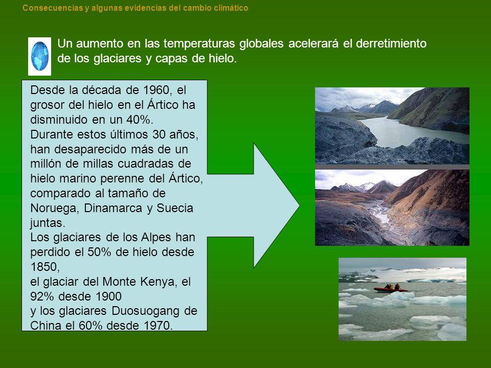 Un aumento en las temperaturas globales acelerará el derretimiento de los glaciares y capas de hielo. Desde la década de 1960, el grosor del hielo en