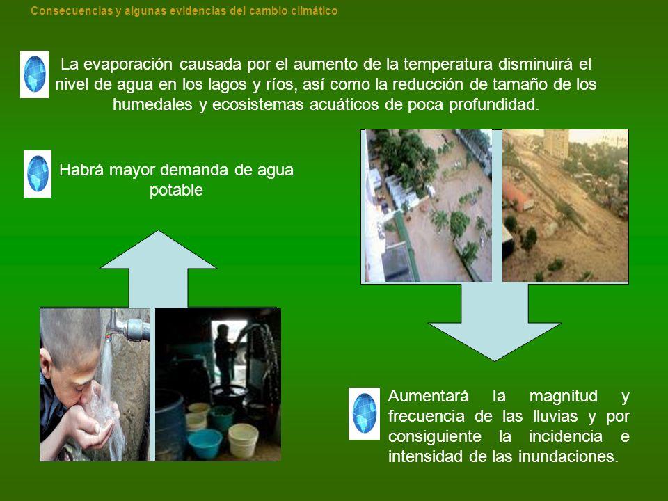 La evaporación causada por el aumento de la temperatura disminuirá el nivel de agua en los lagos y ríos, así como la reducción de tamaño de los humeda