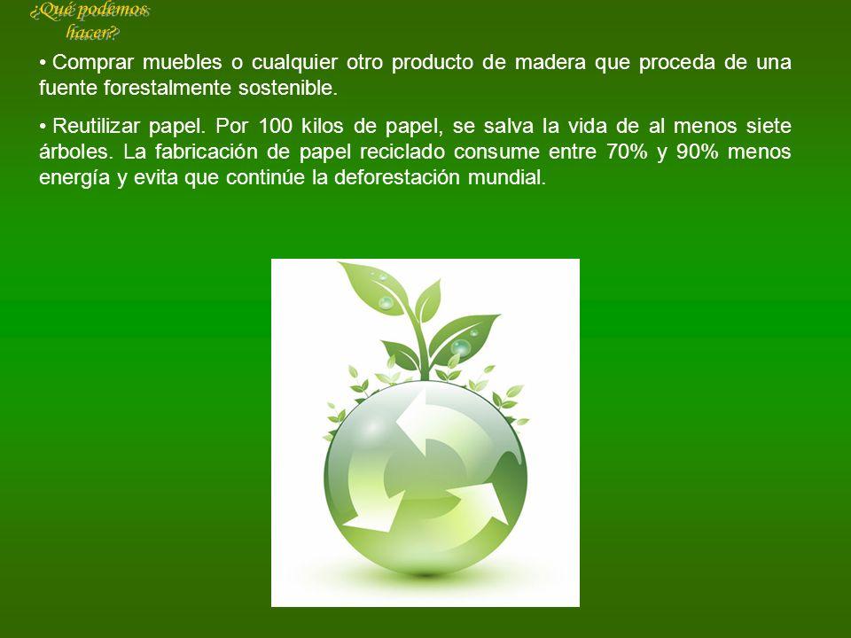 Comprar muebles o cualquier otro producto de madera que proceda de una fuente forestalmente sostenible. Reutilizar papel. Por 100 kilos de papel, se s