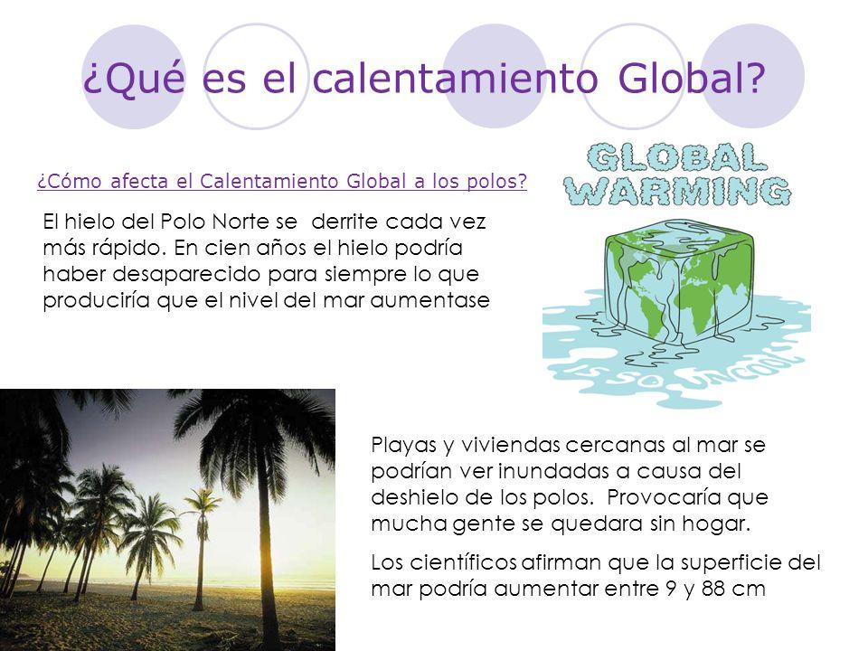 ¿Qué es el calentamiento Global? Playas y viviendas cercanas al mar se podrían ver inundadas a causa del deshielo de los polos. Provocaría que mucha g