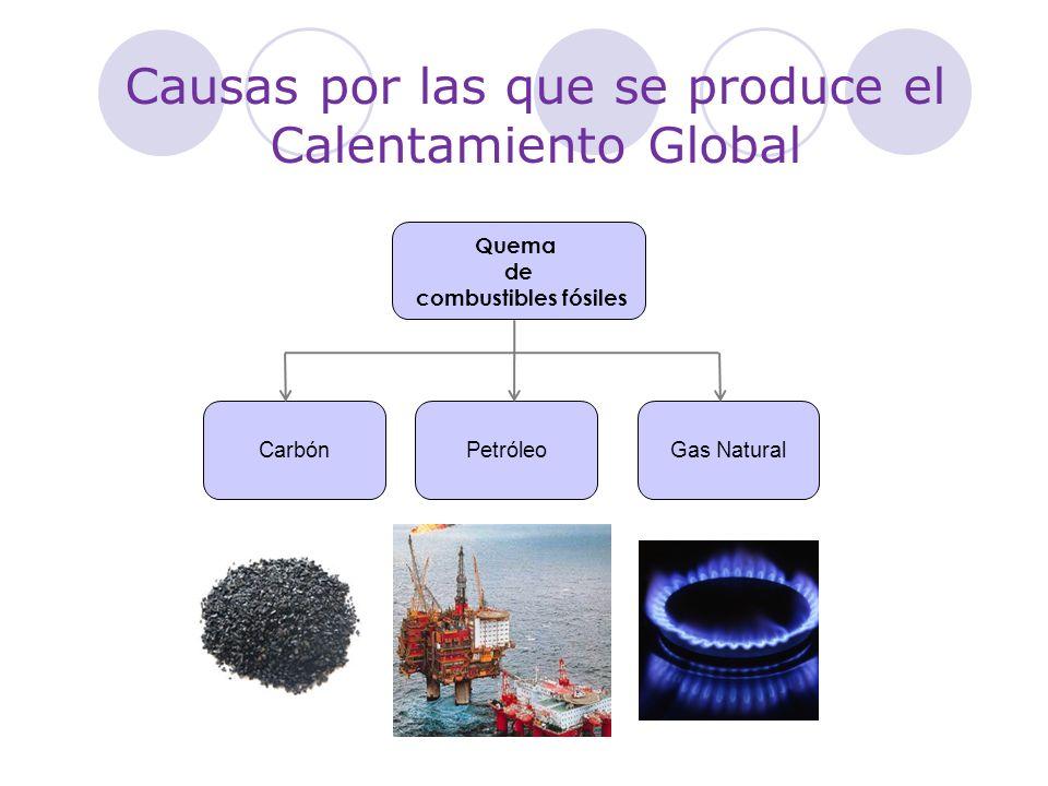 Causas por las que se produce el Calentamiento Global Quema de combustibles fósiles CarbónPetróleoGas Natural
