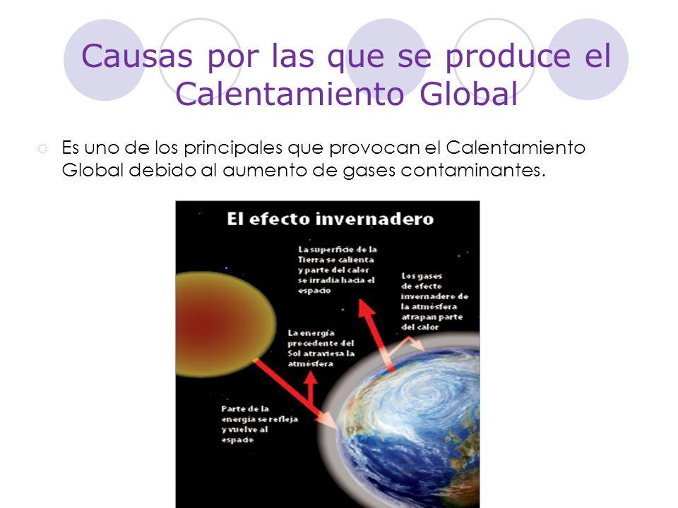 Causas por las que se produce el Calentamiento Global Estos gases se producen por medio de la contaminación de los coches.
