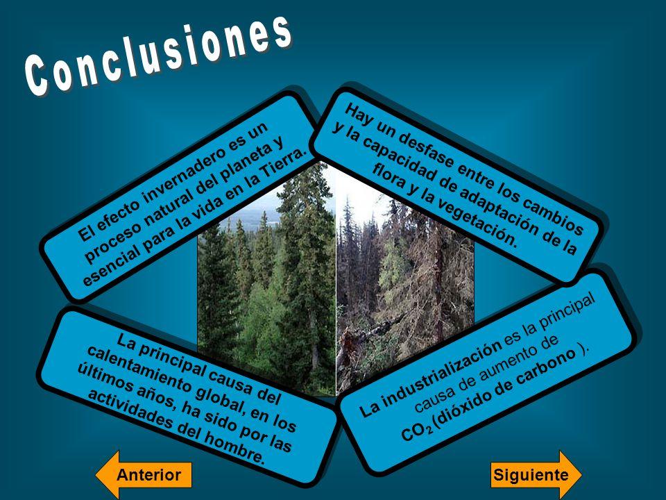 El efecto invernadero es un proceso natural del planeta y esencial para la vida en la Tierra. La principal causa del calentamiento global, en los últi