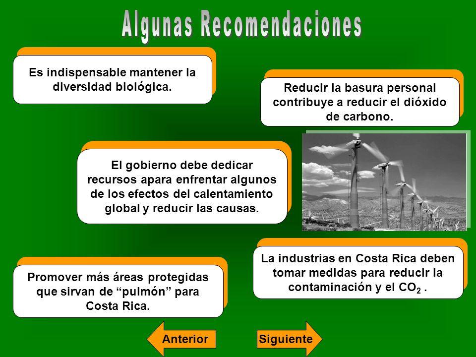 Es indispensable mantener la diversidad biológica. Reducir la basura personal contribuye a reducir el dióxido de carbono. El gobierno debe dedicar rec