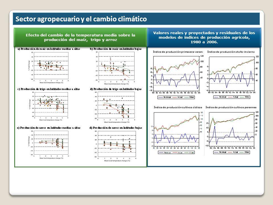 Efecto del cambio de la temperatura media sobre la producción del maíz, trigo y arroz Valores reales y proyectados y residuales de los modelos de índi