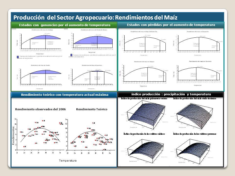 Producción del Sector Agropecuario: Rendimientos del Maíz Estados con ganancias por el aumento de temperatura Rendimiento teórico con temperatura actu