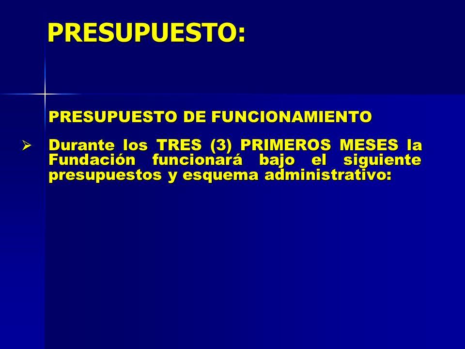 PRESUPUESTO: PRESUPUESTO DE FUNCIONAMIENTO Durante los TRES (3) PRIMEROS MESES la Fundación funcionará bajo el siguiente presupuestos y esquema admini