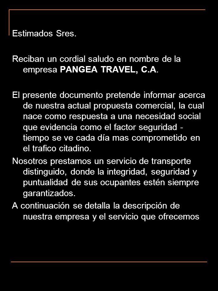 Estimados Sres. Reciban un cordial saludo en nombre de la empresa PANGEA TRAVEL, C.A. El presente documento pretende informar acerca de nuestra actual