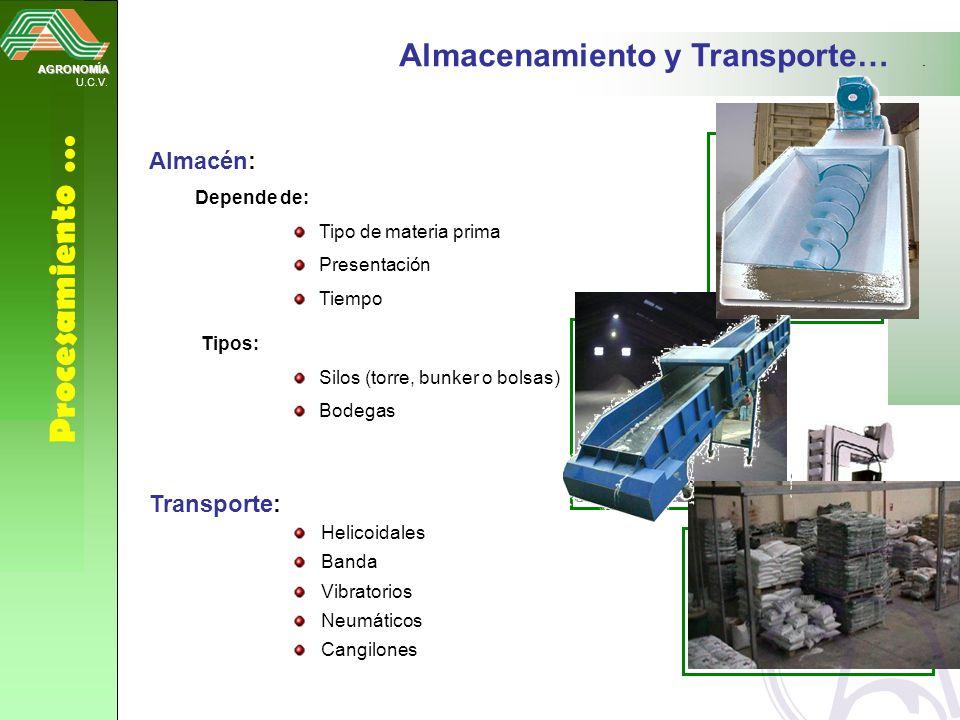 AGRONOMÍA U.C.V. Procesamiento … Almacenamiento y Transporte… Almacén: Depende de: Tipo de materia prima Presentación Tiempo Tipos: Silos (torre, bunk