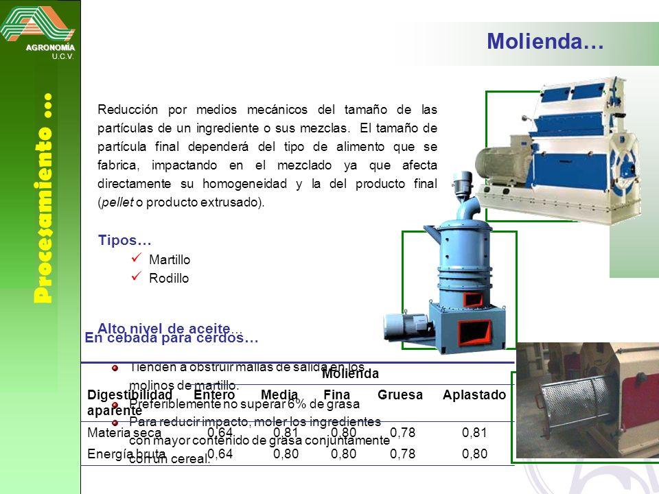 AGRONOMÍA U.C.V. Procesamiento … Molienda… Reducción por medios mecánicos del tamaño de las partículas de un ingrediente o sus mezclas. El tamaño de p