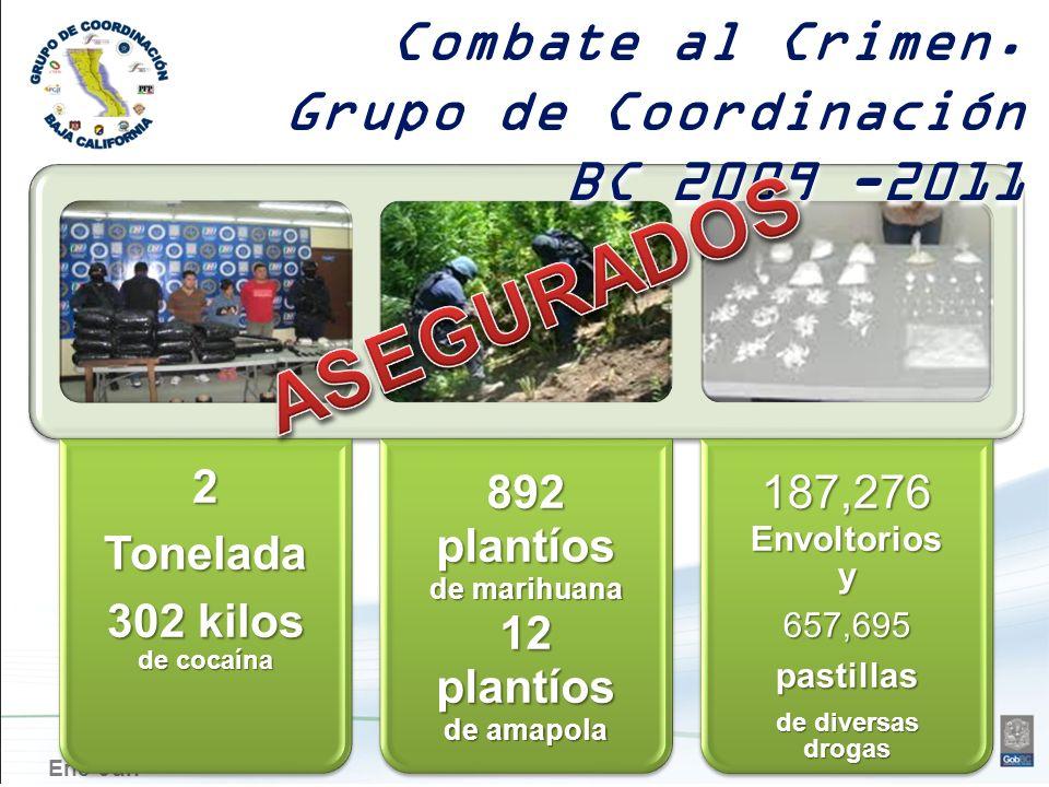 Ene-Jun2Tonelada 302 kilos de cocaína 892 plantíos de marihuana 12 plantíos de amapola 187,276Envoltoriosy657,695pastillas de diversas drogas Combate