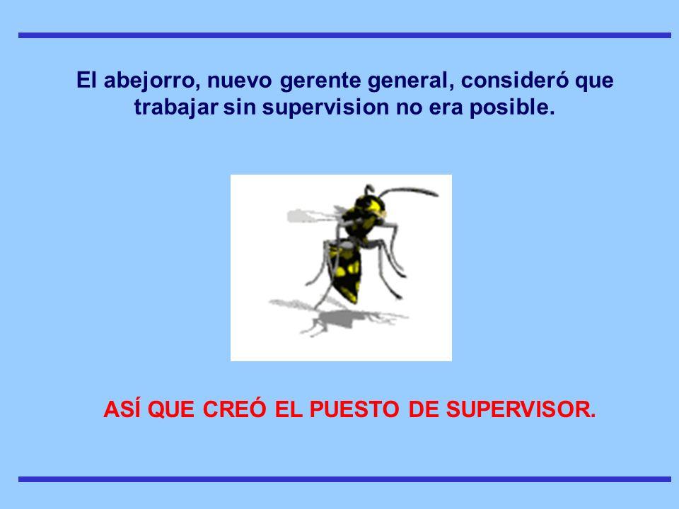 PAra ese puesto, contrataron a un calificado escarabajo El escarabajo supervisor conocía muchas teorías como jat, kaisen, kanban