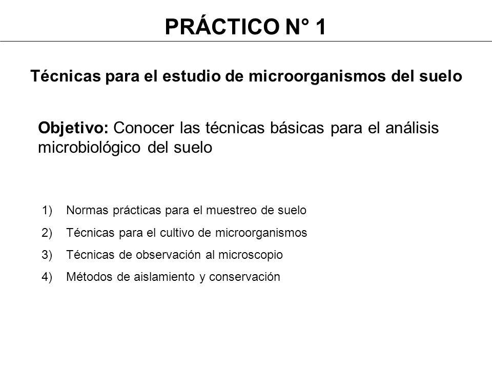Objetivo: Conocer las técnicas básicas para el análisis microbiológico del suelo 1)Normas prácticas para el muestreo de suelo 2)Técnicas para el culti