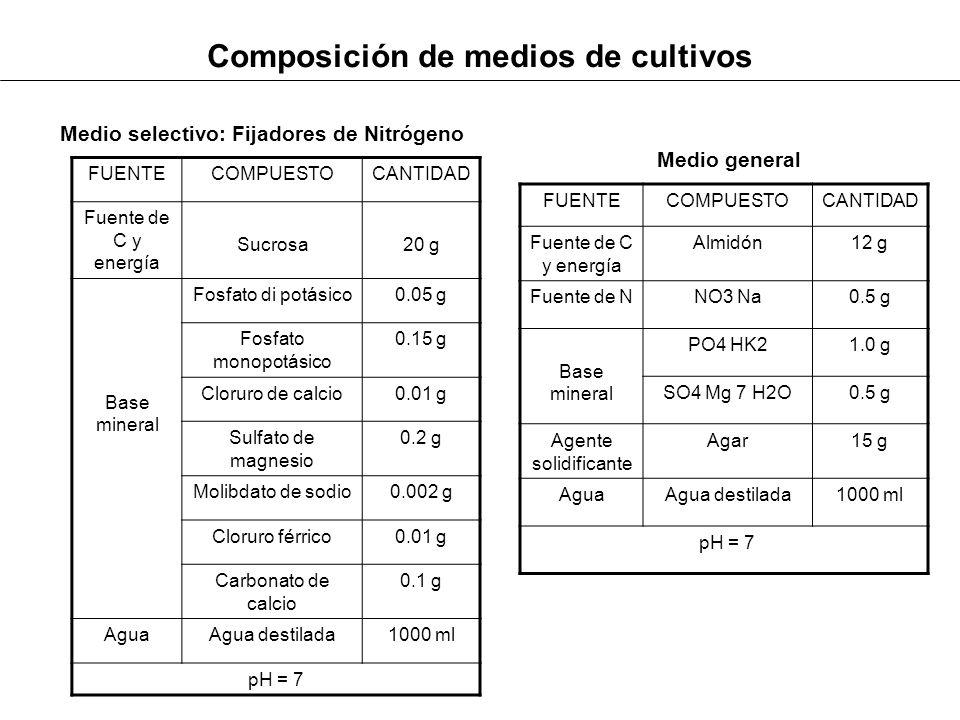Composición de medios de cultivos FUENTECOMPUESTOCANTIDAD Fuente de C y energía Sucrosa20 g Base mineral Fosfato di potásico0.05 g Fosfato monopotásic