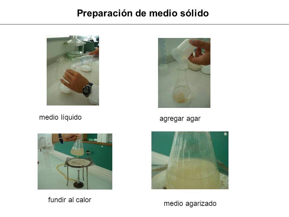 Preparación de medio sólido agregar agar fundir al calor medio líquido medio agarizado