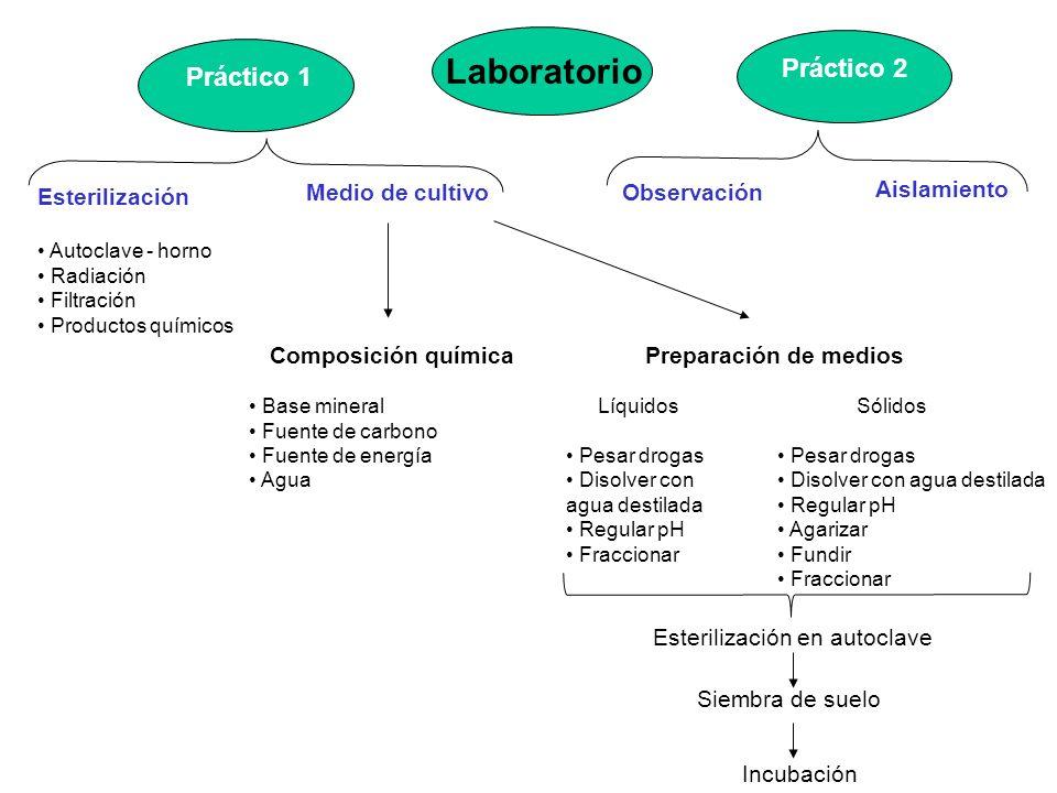 Laboratorio Esterilización Autoclave - horno Radiación Filtración Productos químicos Medio de cultivoObservación Aislamiento Práctico 2 Composición qu