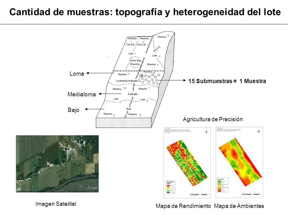 Cantidad de muestras: topografía y heterogeneidad del lote 15 Submuestras = 1 Muestra Loma Medialoma Bajo Imagen Satelital Mapa de RendimientoMapa de