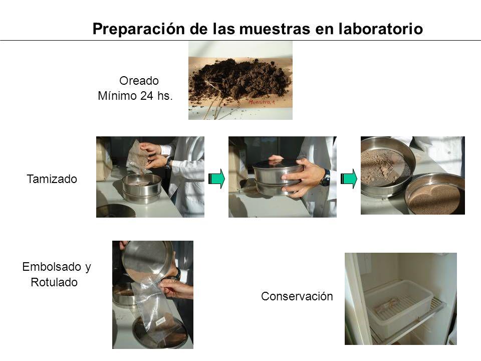 Preparación de las muestras en laboratorio Oreado Tamizado Embolsado y Rotulado Conservación Mínimo 24 hs.