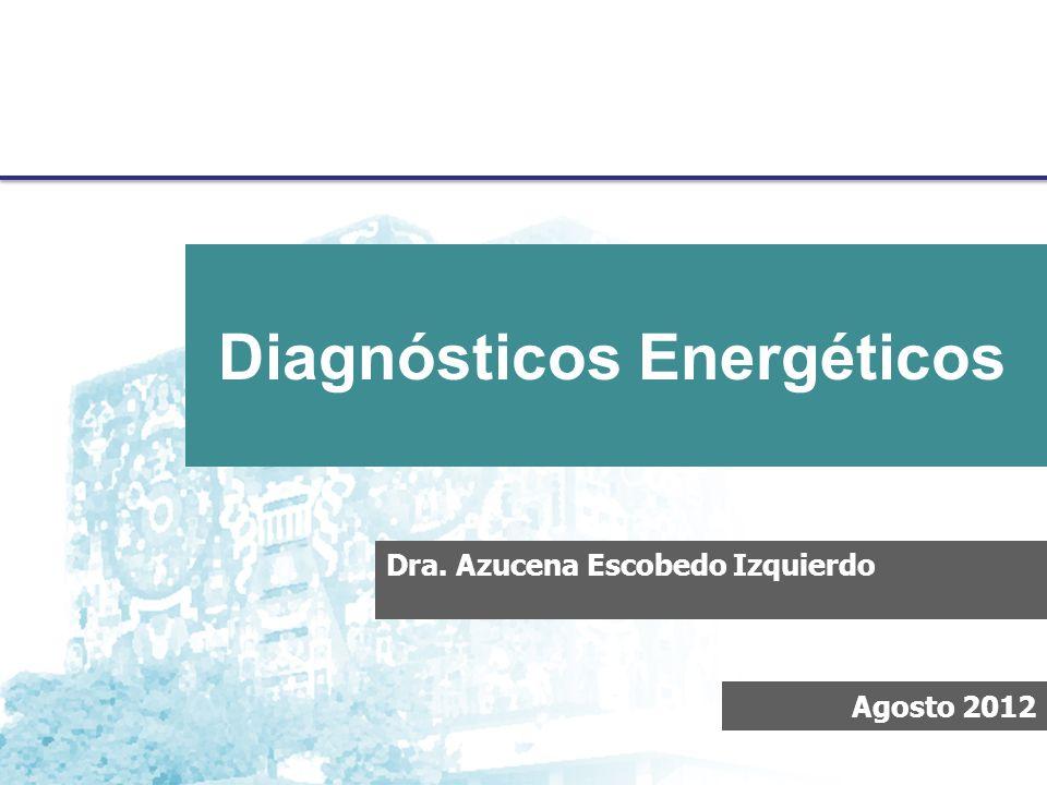 Metodología para Diagnósticos Energéticos, Proyecto PAPIIT Dra. Azucena Escobedo Izquierdo Agosto 2012 Diagnósticos Energéticos