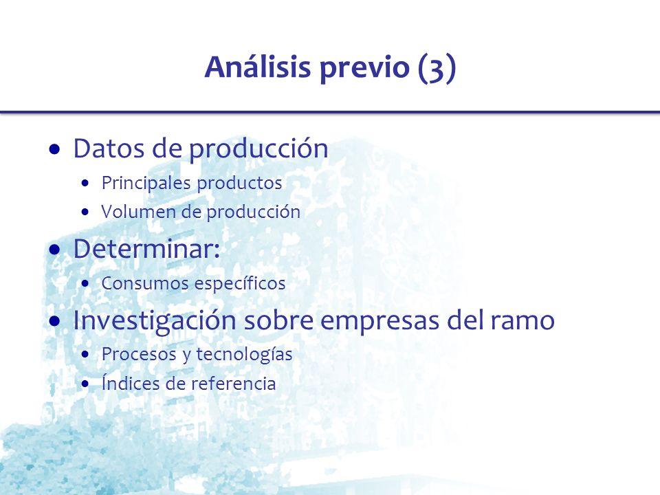 Análisis previo (3) Datos de producción Principales productos Volumen de producción Determinar: Consumos específicos Investigación sobre empresas del