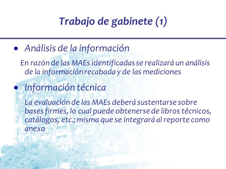 Trabajo de gabinete (1) Análisis de la información En razón de las MAEs identificadas se realizará un análisis de la información recabada y de las med
